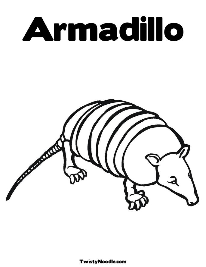 armadillo coloring pages - photo#17
