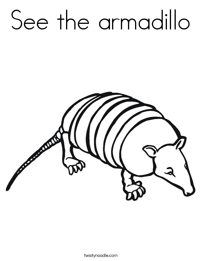 See the armadillo Coloring Page