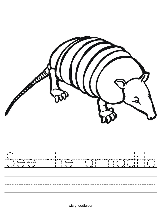 See the armadillo Worksheet
