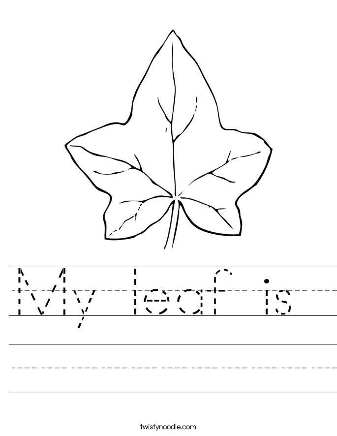 My leaf is  Worksheet