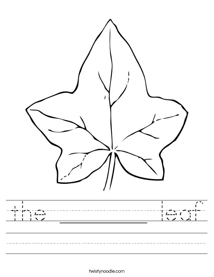 the _______ leaf Worksheet