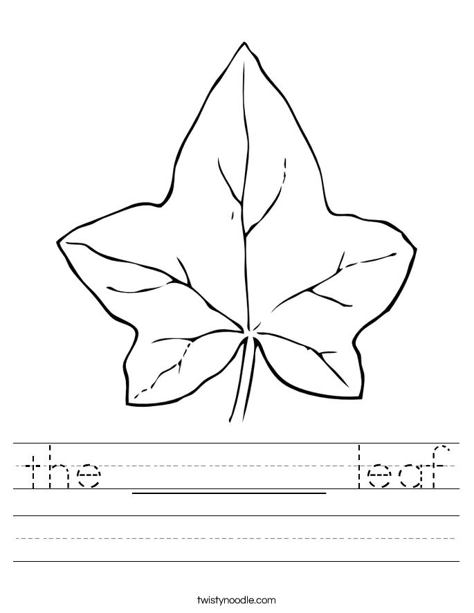 the _______ leaf Worksheet