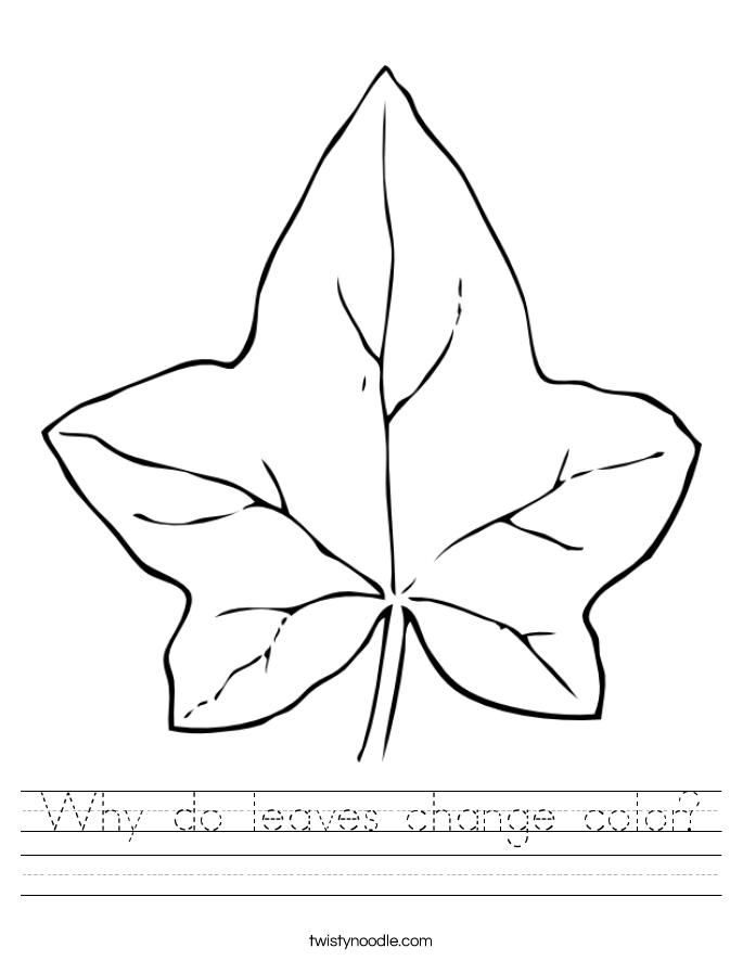 Why do leaves change color? Worksheet