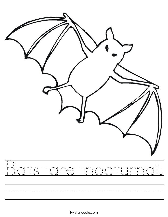 Bats Are Nocturnal Worksheet Twisty Noodle