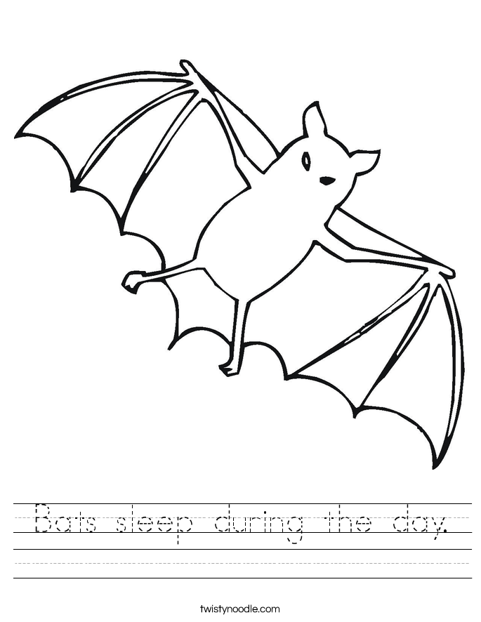 Bats sleep during the day. Worksheet