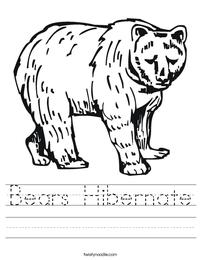 Bears Hibernate Worksheet
