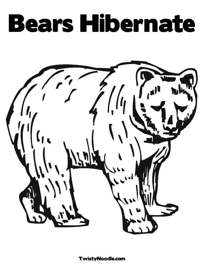 Hibernating Bear Coloring Pages Free  RedCabWorcester