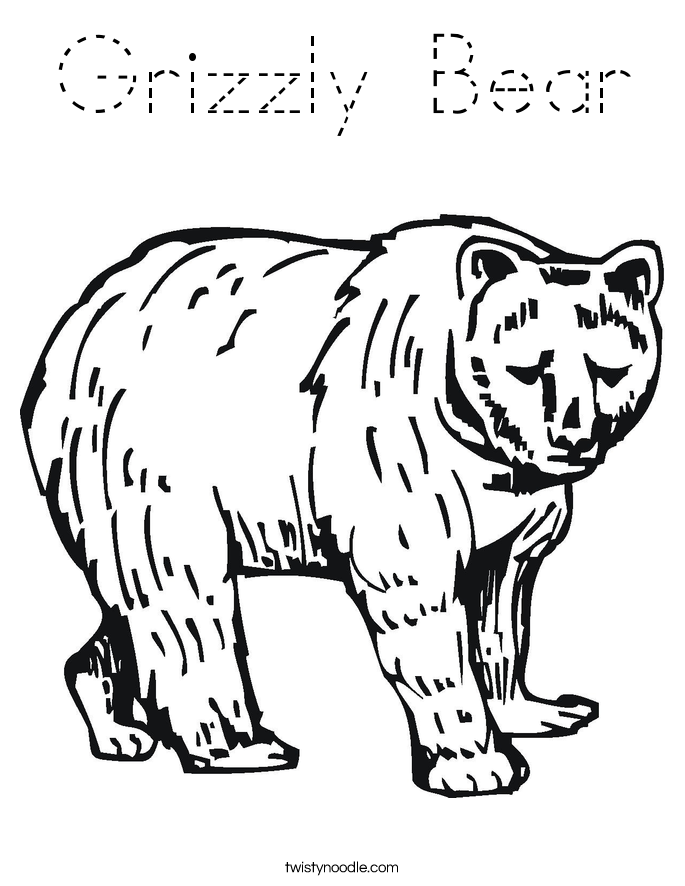 Grizzly Bear Coloring Page Tracing