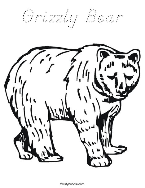 Grizzly Bear Coloring Page