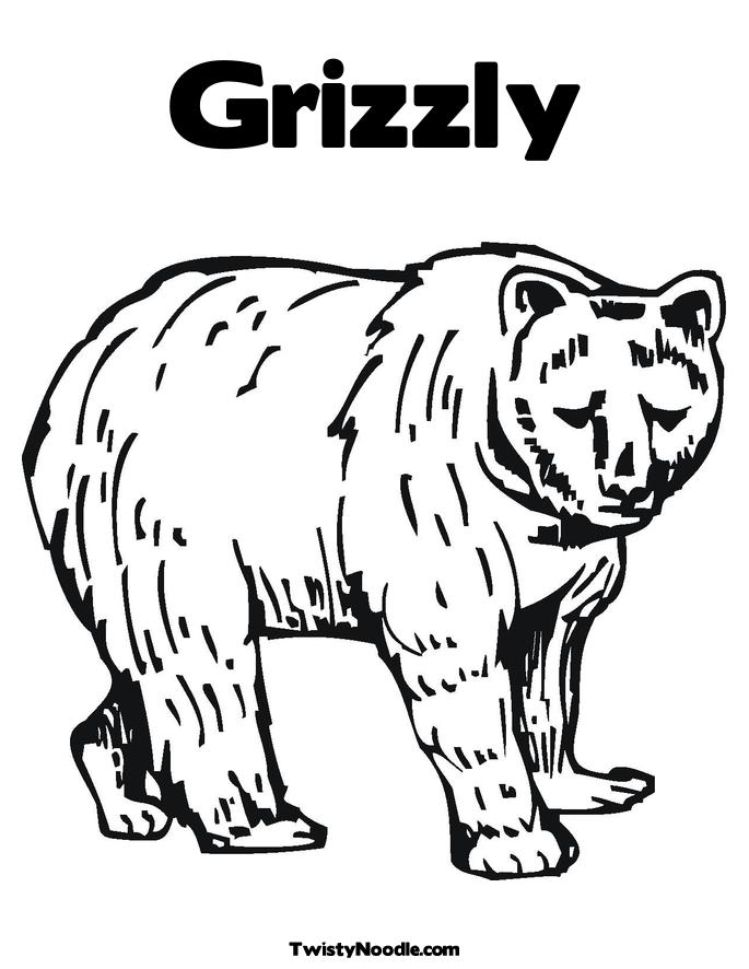 Bear Paw Print Coloring Page Images