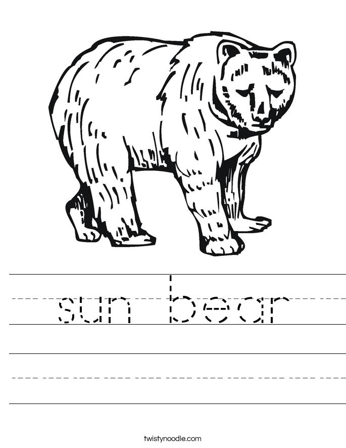 sun bear Worksheet
