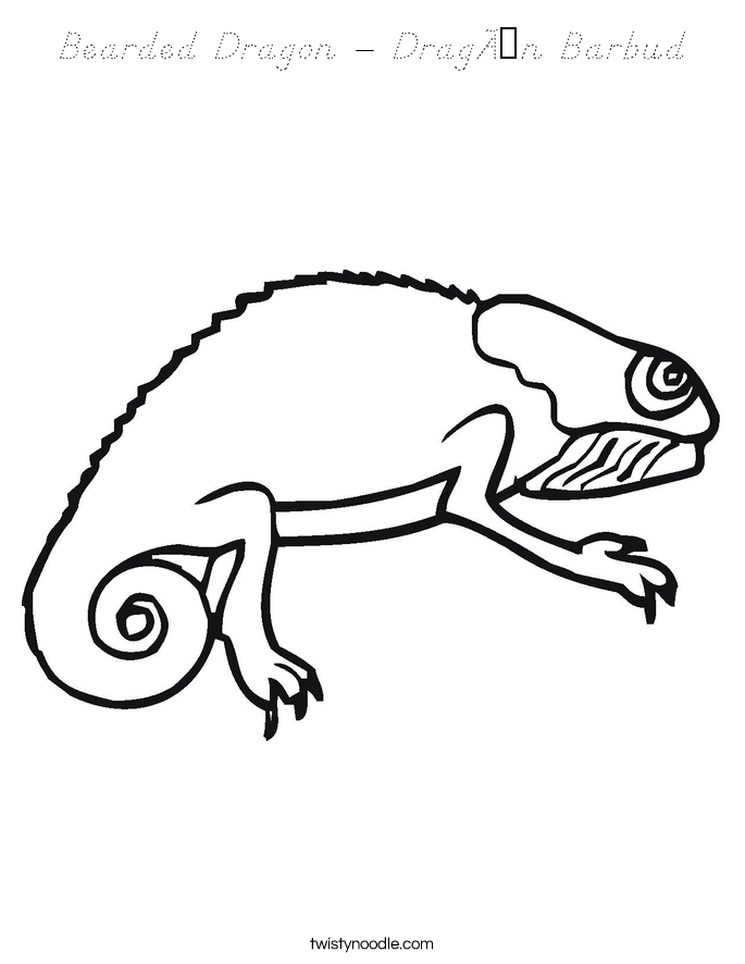 Bearded Dragon - Dragón Barbud Coloring Page