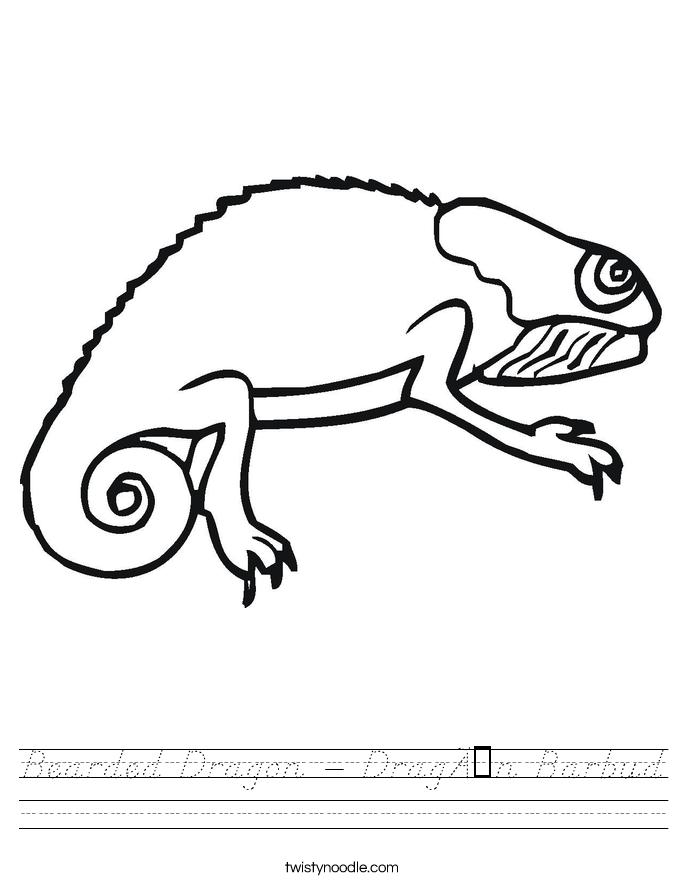 Bearded Dragon - Dragón Barbud Worksheet