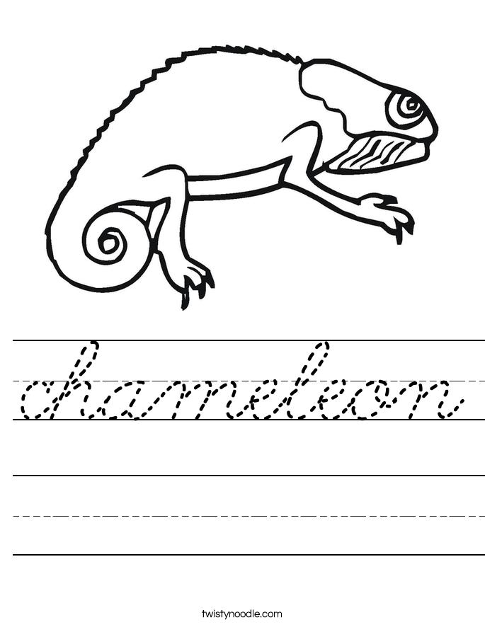 chameleon Worksheet