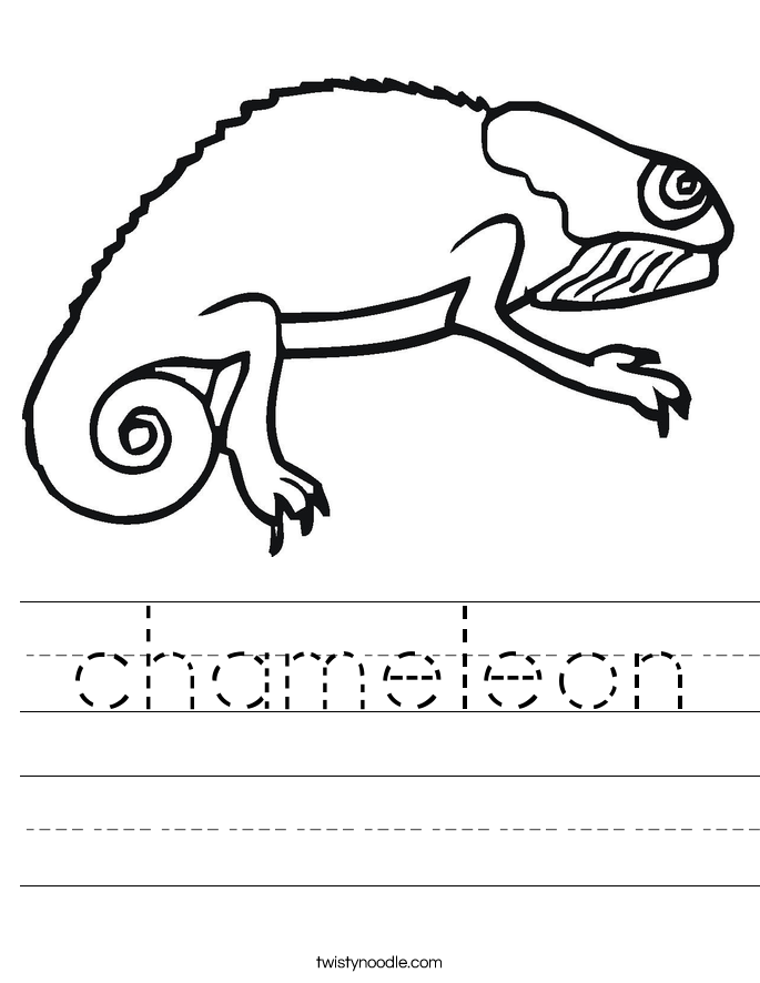 chameleon Worksheet