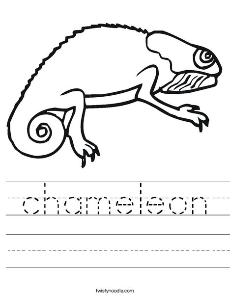 Bearded Dragon Worksheet