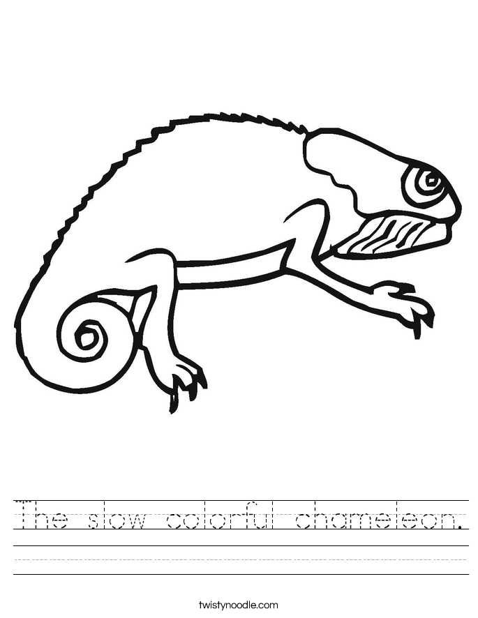 The slow colorful chameleon. Worksheet