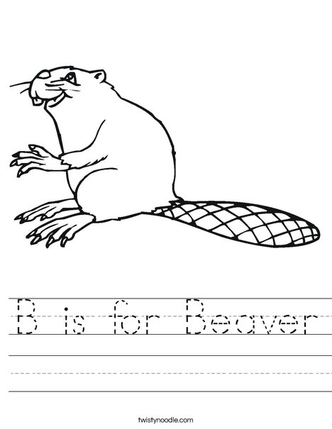 Beaver Worksheet