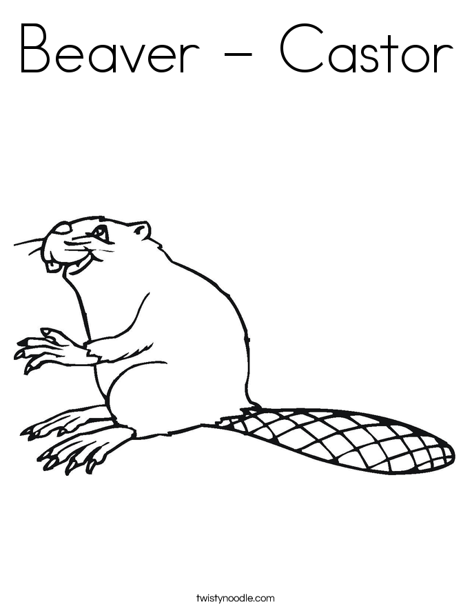 Beaver - Castor Coloring Page