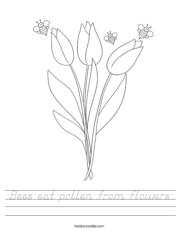 Bees eat pollen from flowers Worksheet