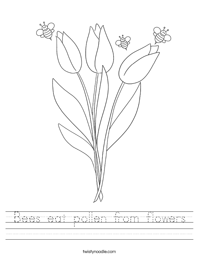 Bees eat pollen from flowers Worksheet