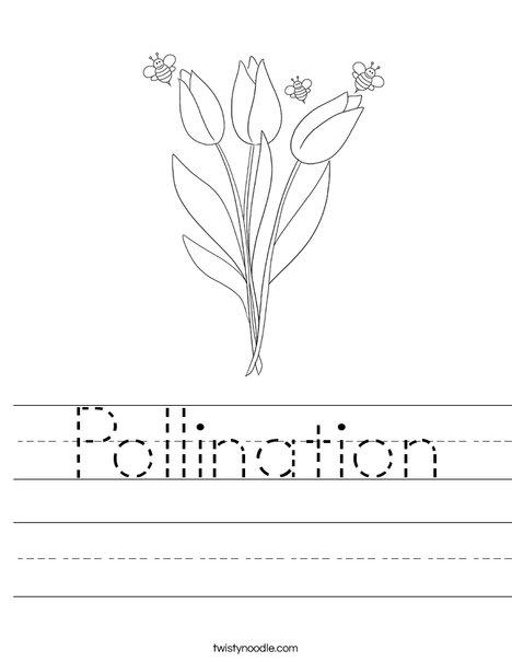Bee and Flower Worksheet