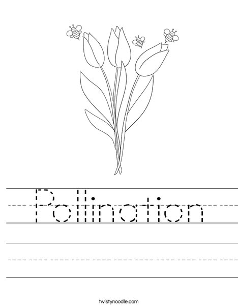 Pollination worksheet | Pollination Lesson Ideas | Pinterest ...