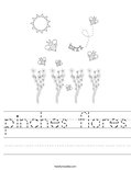 pinches flores Worksheet
