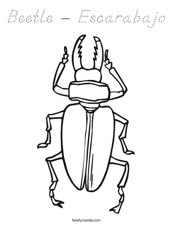 Beetle - Escarabajo Coloring Page