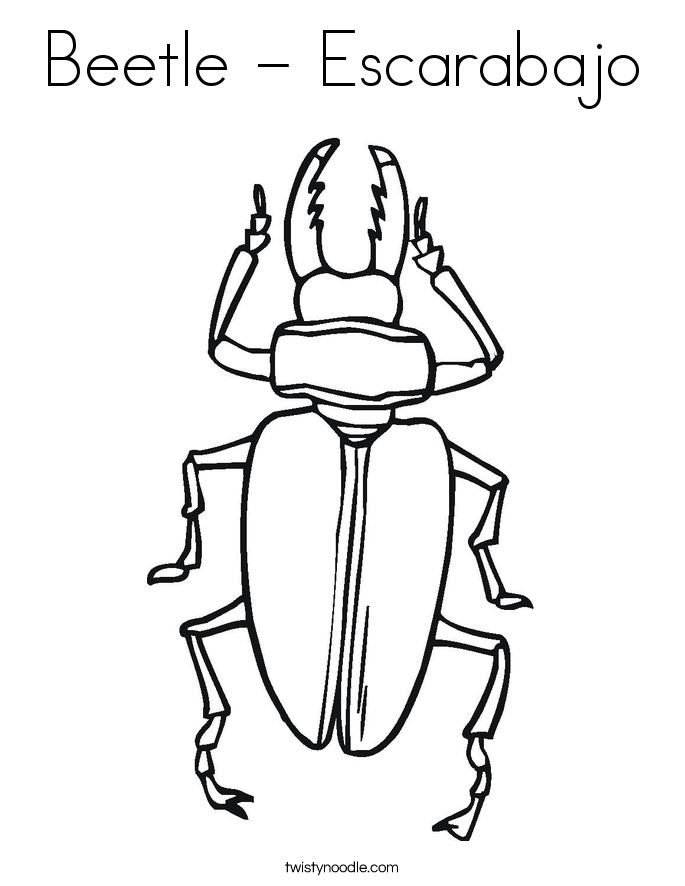 Beetle - Escarabajo Coloring Page