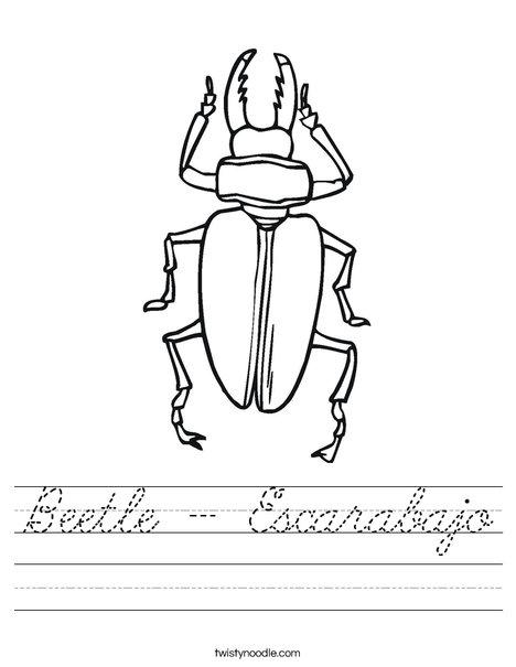 Black Beetle Worksheet