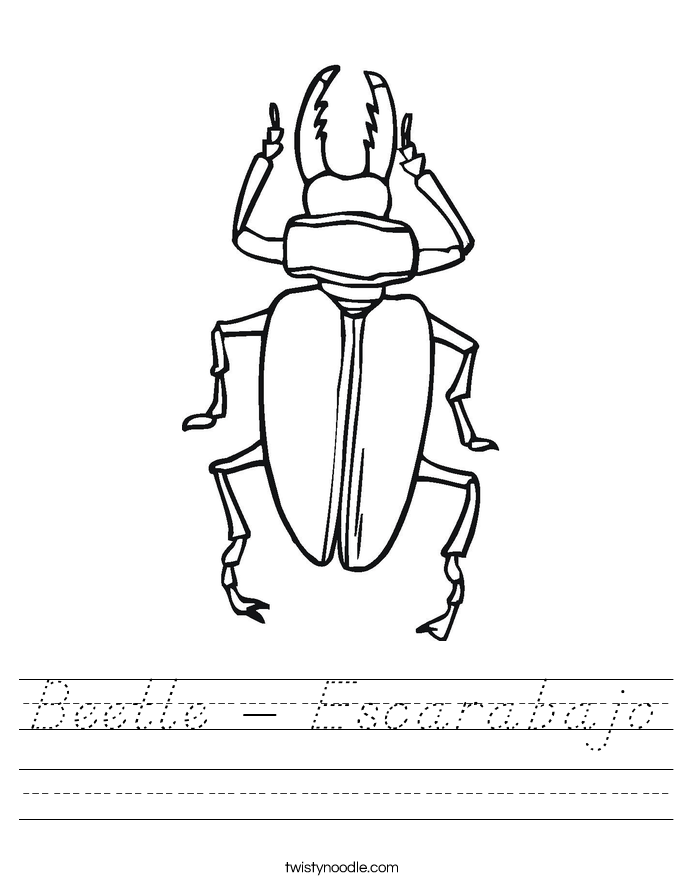 Beetle - Escarabajo Worksheet