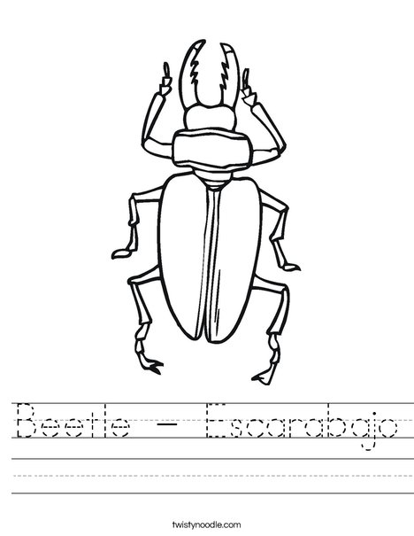 Black Beetle Worksheet