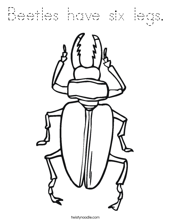 Beetles have six legs. Coloring Page
