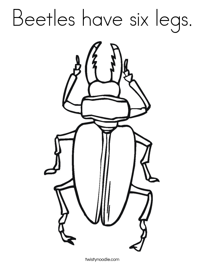 Beetles Have Six Legs Coloring Page