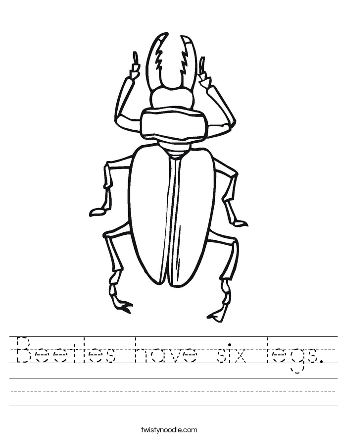 Beetles have six legs. Worksheet