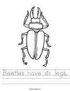 Beetles have six legs Handwriting Sheet