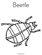 Beetle Coloring Page