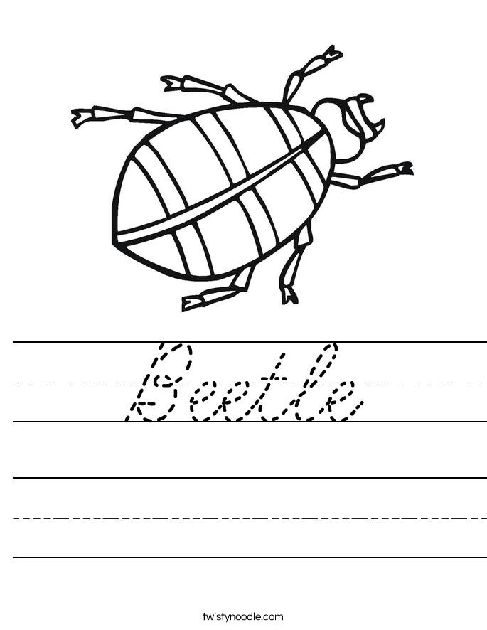 Beetle Worksheet