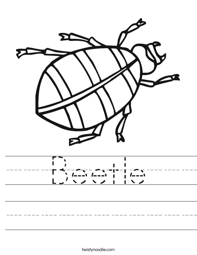 Beetle Worksheet