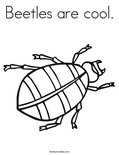 Beetles are cool. Coloring Page