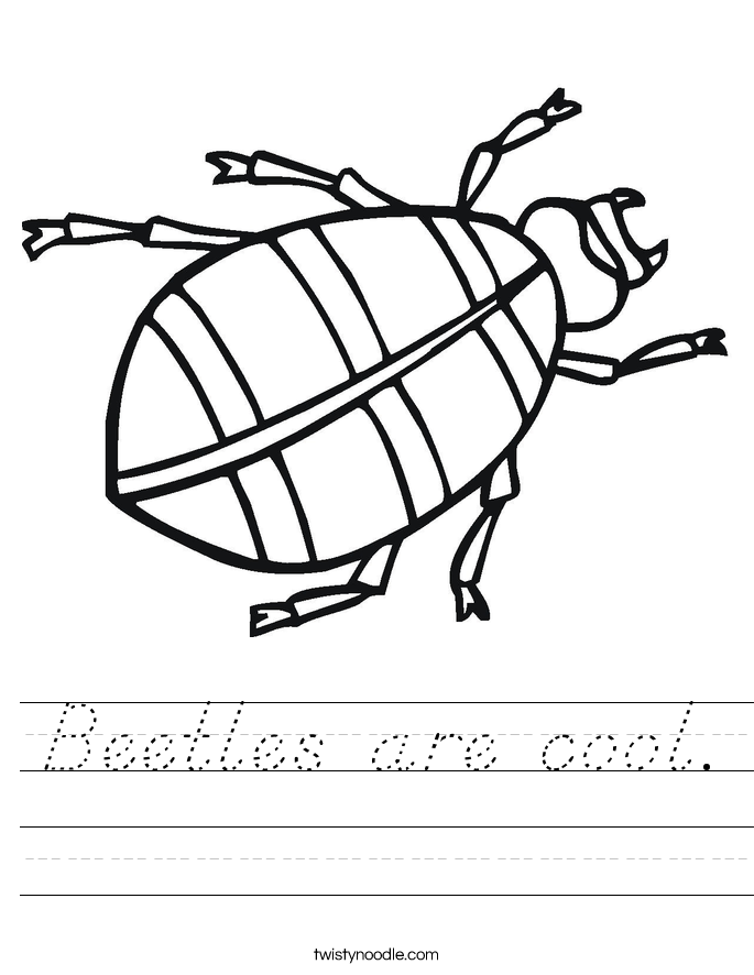 Beetles are cool. Worksheet