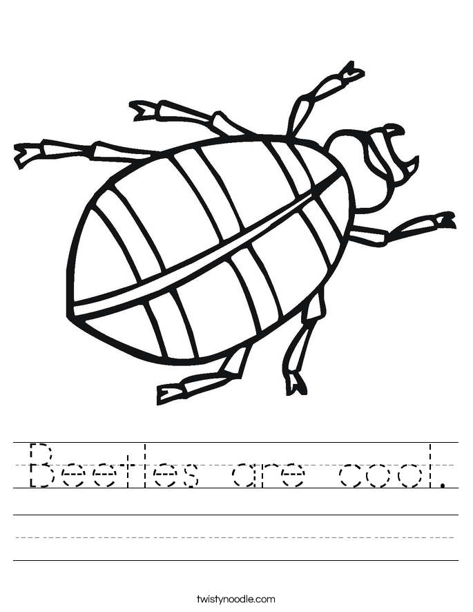 Beetles are cool. Worksheet