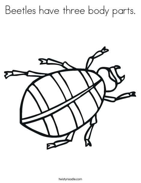 Get Free High Quality HD Wallpapers Coloring Page Insect Body Parts