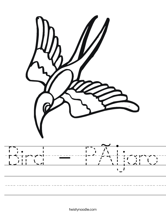 Bird - Pájaro Worksheet