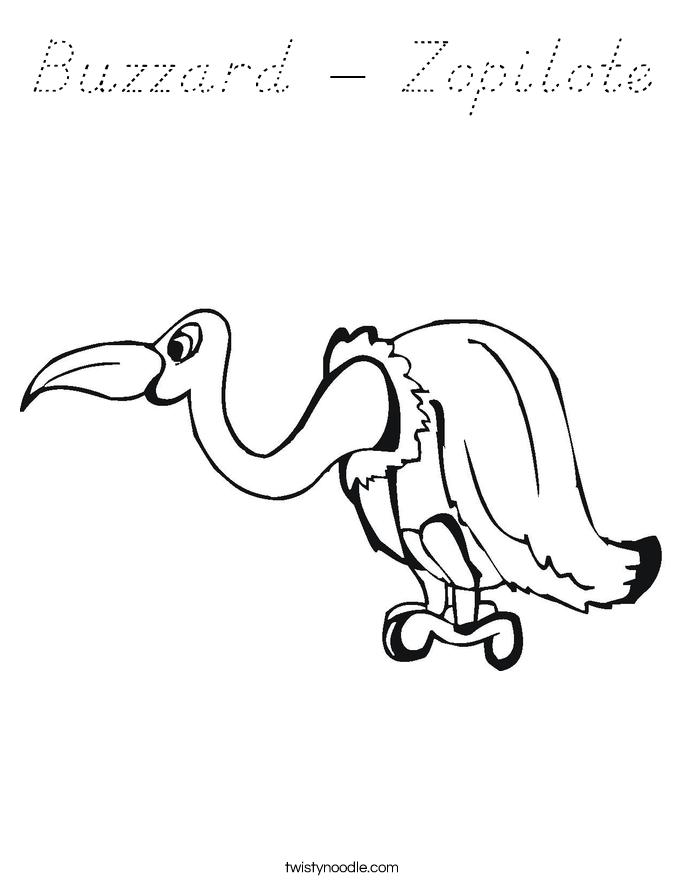Buzzard - Zopilote Coloring Page