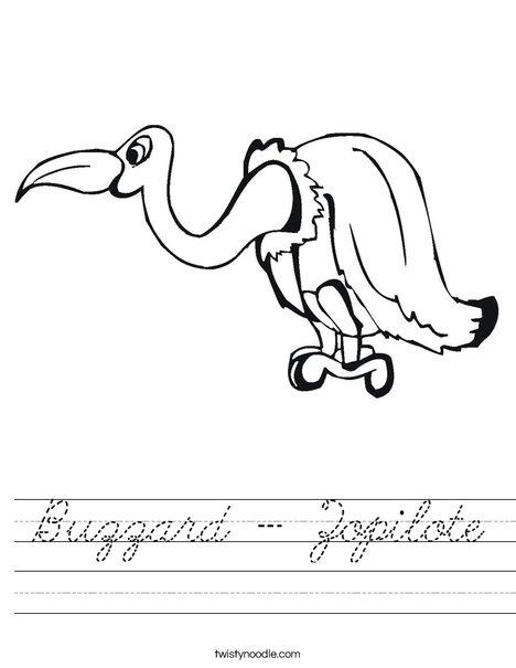Buzzard Worksheet