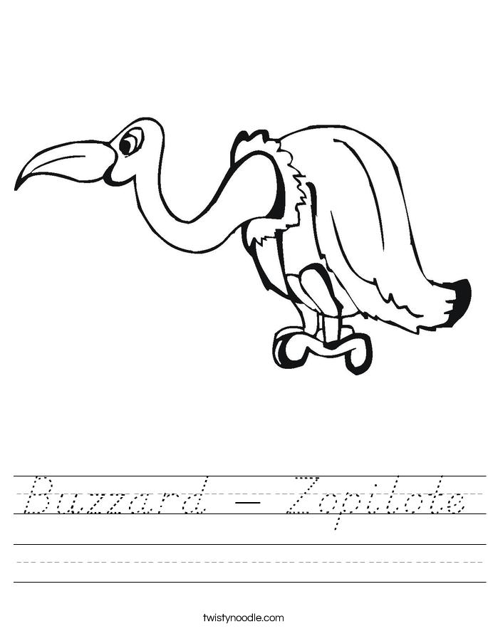 Buzzard - Zopilote Worksheet
