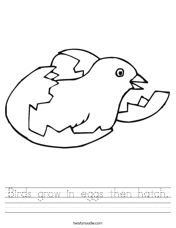Birds grow in eggs then hatch. Worksheet