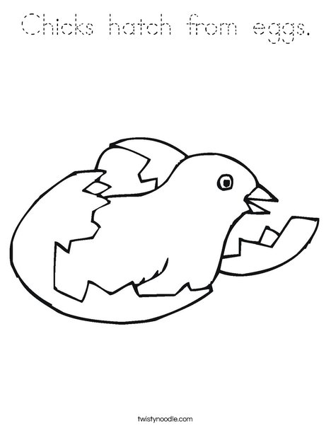 Bird Hatching Coloring Page